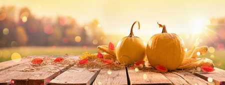 Happy Thanksgiving Day Background. Wooden Table Decorated with Pumpkins. Holiday Autumn Concept Harvest Standard-Bild