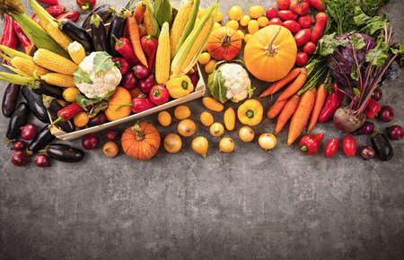 Harvested Autumn Harvest on a Dark Background. Top View Standard-Bild