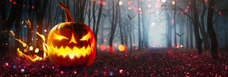 Halloween Pumpkin Glowing In Fantasy Night Forest. Jack OLantern Holiday Horror Background. Holiday Party Art Design Фото со стока