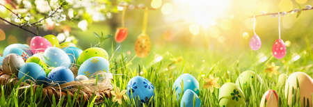 Spring Natural Background With Easter Eggs and Fresh Green Grass Standard-Bild