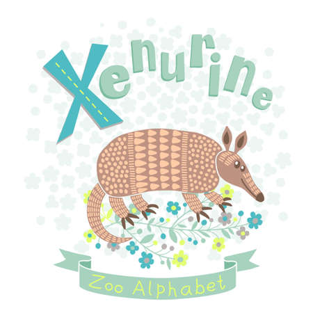 Letter X - Xenurine. Alphabet with cute animals. Vector illustration. Vector