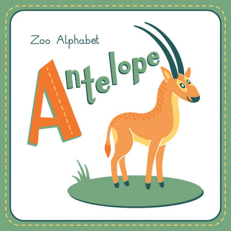 vocabulary: Letter A - Antelope  Alphabet with cute animals  Vector illustration  Other letters from this set are available in my portfolio