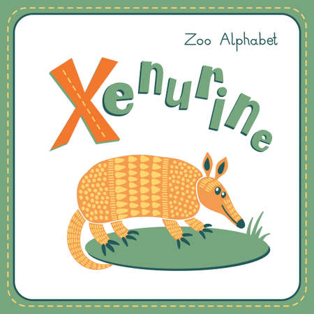 Letter X - Xenurine. Alphabet with cute animals Vector