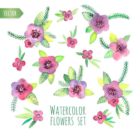 Violet watercolor set. Elements for design. Vector isolated illustration. Vector