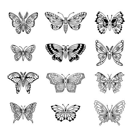 butterfly in hand: Set of Butterflies Decorative Isolated Silhouettes in Vector.