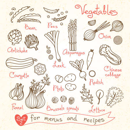 Set drawings of vegetables for design menus, recipes and packages product. Vector Illustration. Illustration