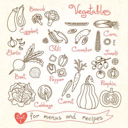ensalada verde: Establecer dibujos de verduras para los men�s de dise�o, recetas y paquetes de productos. Ilustraci�n del vector. Vectores