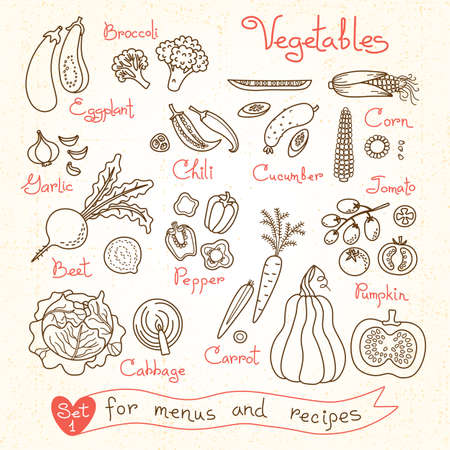 Set drawings of vegetables for design menus, recipes and packages product. Vector Illustration. Stock Illustratie