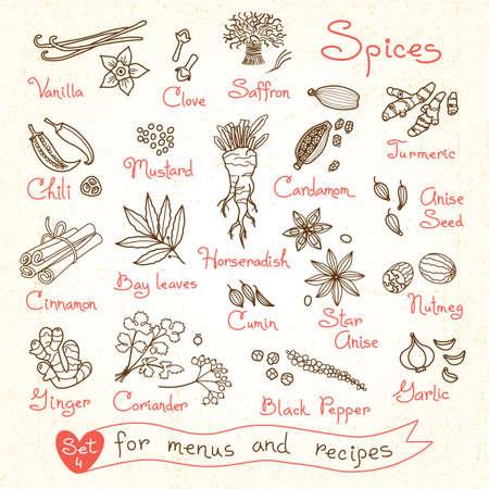 デザイン メニューのレシピ、パッケージ商品のためのスパイスの図面を設定します。ベクトルの図。