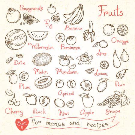dibujo: Dibujos Conjunto de fruta para los menús de diseño, recetas y paquetes de productos. Ilustración del vector.