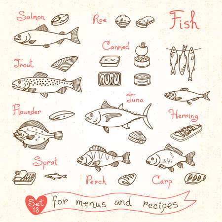 flounder: Set drawings of fish for design menus, recipes and packing. Trout, herring, sprat, flounder, perch, carp, tuna, salmon roe canned fish Vector illustration Illustration