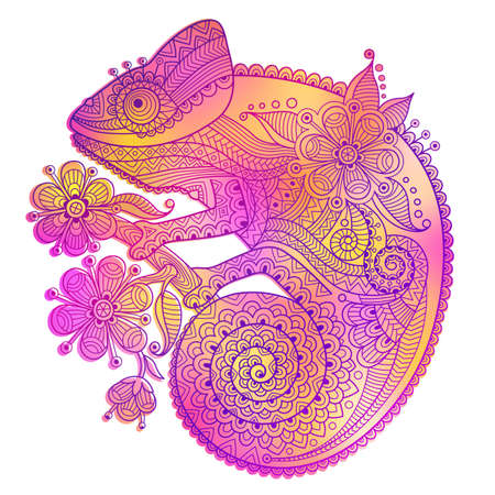 decorative patterns: Vector illustration of rainbow chameleon and decorative patterns. Illustration