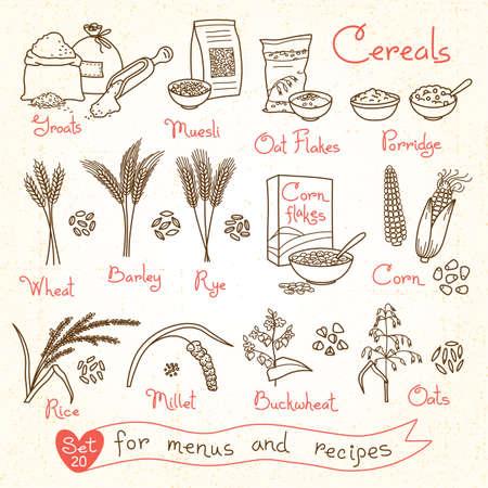 produits céréaliers: Set dessins de céréales pour les menus de conception, des recettes et de l'emballage. Flakes, gruaux, porridge, muesli, cornflakes, avoine, seigle, blé, orge, millet, le sarrasin, le riz, le maïs. Vector illustration. Illustration
