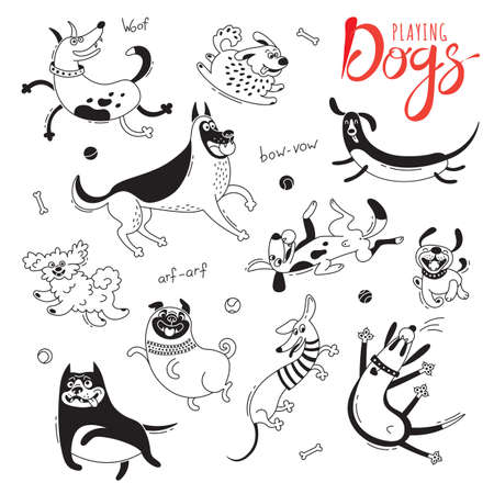 Playing dogs. Funny lap-dog, happy pug, mongrels and other breeds. Set of isolated vector drawings for design