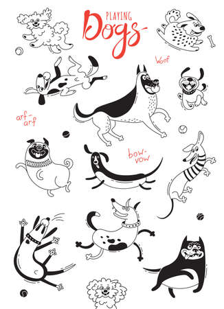 Playing dogs. Funny lap-dog, happy pug, mongrels and other breeds. Set of isolated vector drawings for design.