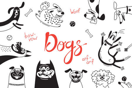 Card with joyful dogs and happy puppies. Vector background with mongrels, sheepdog, dachshund, lap-dog and others breeds