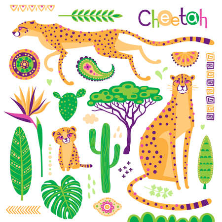Wild exotic cats, tropical plants and ethnic patterns set. Cheetahs and their cub. Vector illustration of cartoon style 일러스트