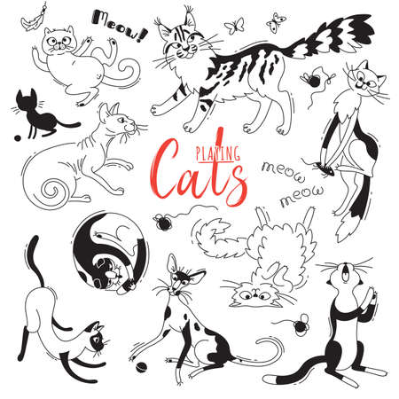 Set with playing cats of different breeds. Characters cat in the style of doodle cartoon. Vector illustration.