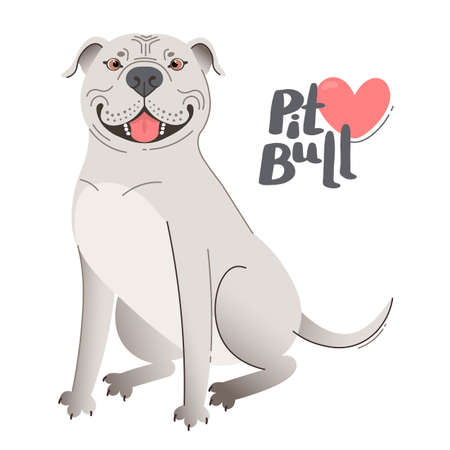 White American Staffordshire Pit Bull Terrier. Happy pitbull. Vector illustration 일러스트