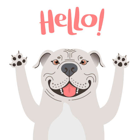 Greeting card with cute Pitbul dog. Sweet American Staffordshire Pit Bull Terrier says hello. Vector illustration Illustration