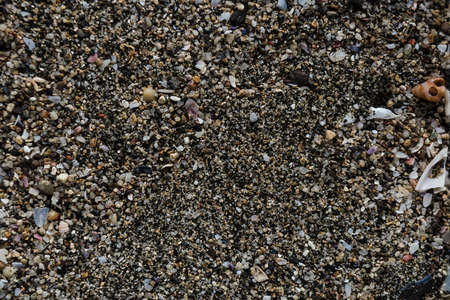 Grains of sand from the sea are found on city beaches. Close-up view of grit collection in sunny summer day as background. Top view, marine concept. Stock Photo