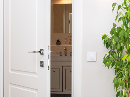 Ajar white door in a dark bathroom. Series switch on a light gray wall. Modern chrome door handle and lock. Green houseplant Stock Photo