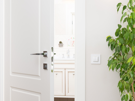 Ajar white door to the bathroom. Series switch on a light gray wall. Modern chrome door handle and lock. Green houseplant