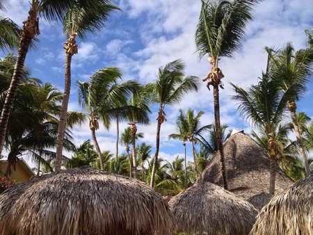 Punta Canas beautiful scenery