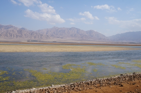 salt marsh: Salt lake near Eilat, Israel Stock Photo