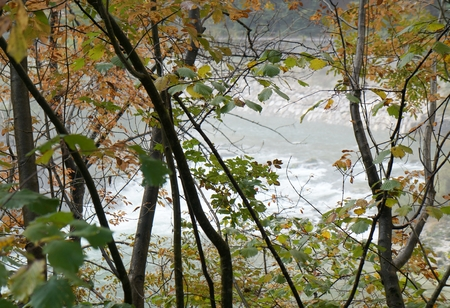 Autumnal forest and the river photo