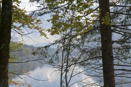 bohinj: Bohinj lake, Slovenia, Europe