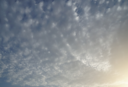 fleecy: Sky with beautiful fleecy clouds in sunset time