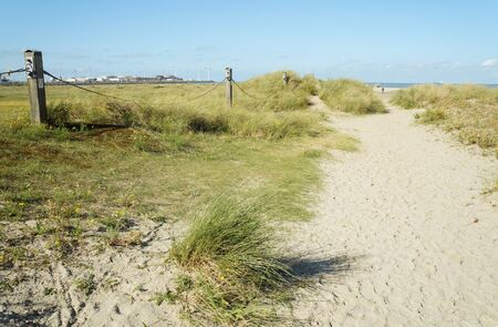 heist: Dunes of sand with green tall grass near Northern sea in Zeebrugge, Belgium Stock Photo