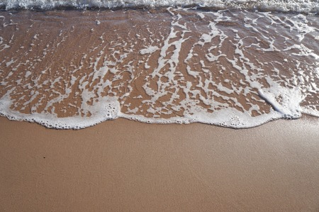 Sandy beach with sea wave and foam, copyspace