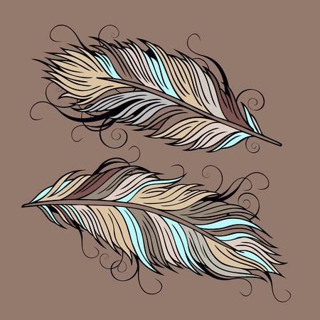 Vintage abstract decorative ethnic vector Feathers illustration Illustration
