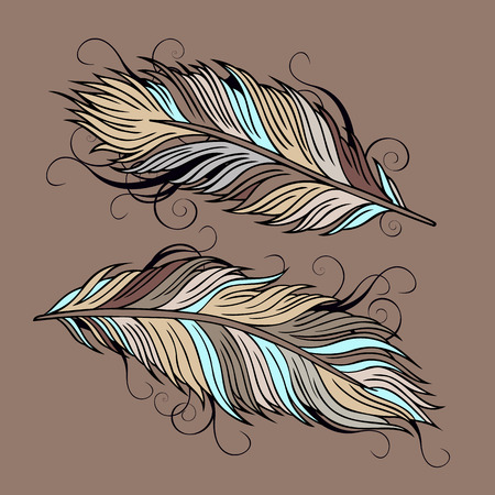 Vintage abstract decorative ethnic vector Feathers illustration Vector