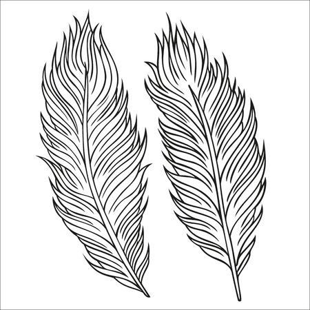 Vintage abstraites décoratives plumes de vecteur ethnique. illustration dessinée à la main.