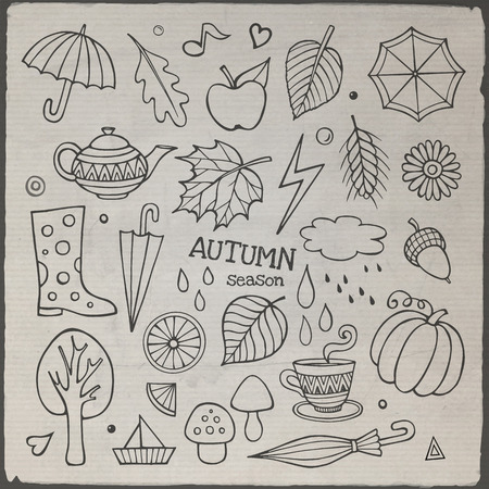 Vector set of different hand drawn autumn elements Vector