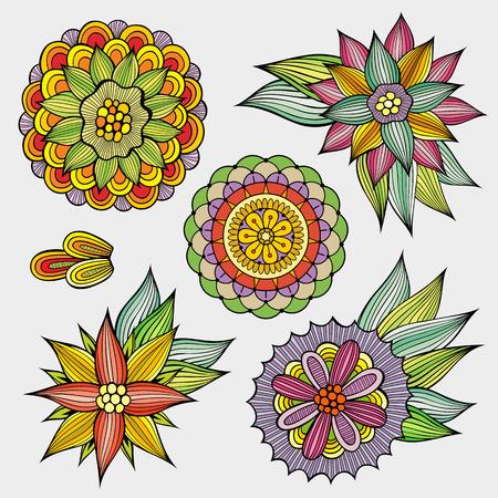 Set of decorative hand drawn vector floral design elements