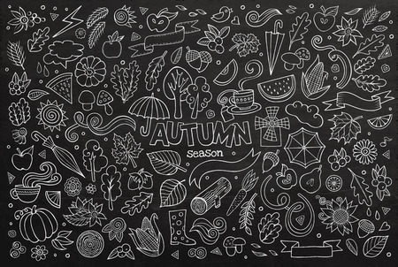 Chalkboard vector hand drawn Doodle cartoon set of objects and symbols on the autumn theme