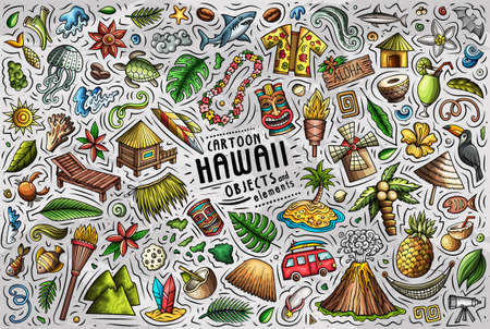 Colorful vector doodle cartoon set of Hawaii objects and symbols