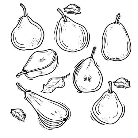 vector illustration of pears in Doodle style. contour drawing of a pear.imaginary fruit design. Çizim