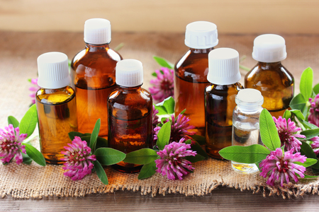Essential oils. Clover and glass bottles on the table. Health, medicine.