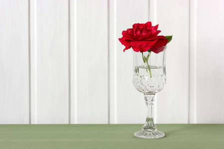 one garden scarlet rose in a glass on the table on a light background. red flower. Stock Photo