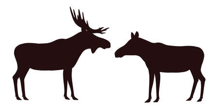elk, moose, male and female. vector illustration. black silhouette on a white background.