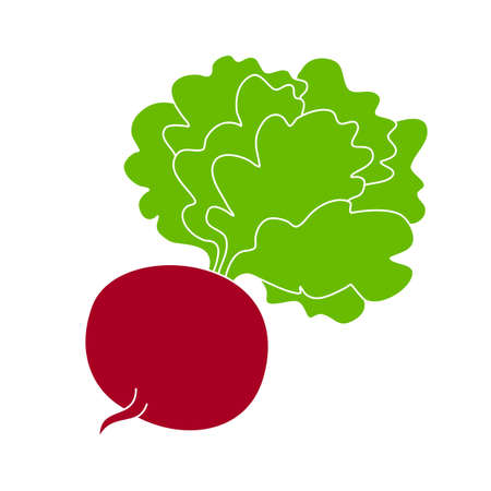 beetroot with tops, hand-drawn icon. color vector illustration. one vegetable isolated on a white background.