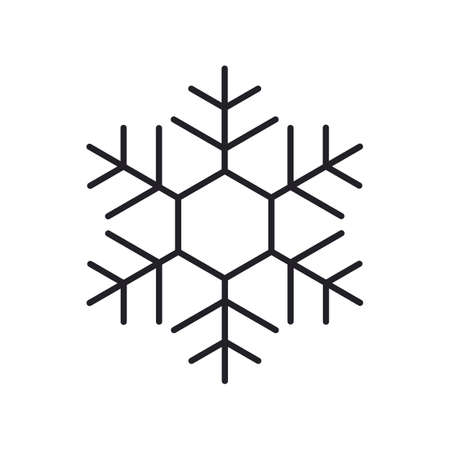 snowflake, a linear icon on a white background. vector illustration. a sign, a symbol of cold, winter.
