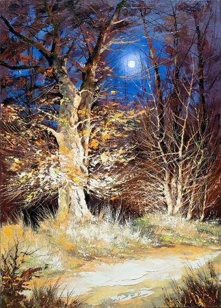 Night wood under the moon Stock Photo - 5852903