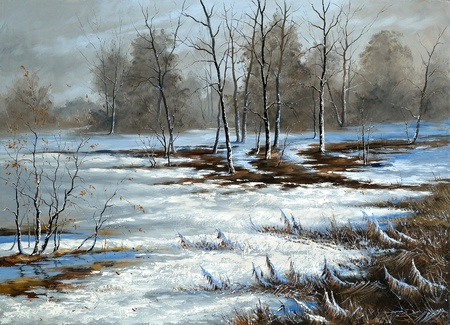 winter day: Bog cloudy, winter day