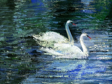 oil paintings: Two white swans on lake